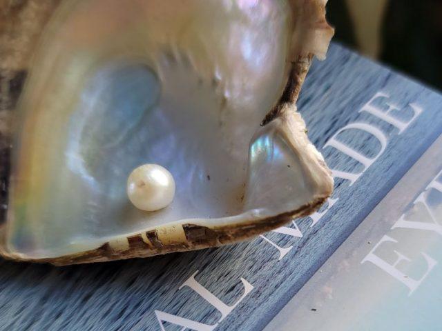 「美しさ」と「美」と「用の美」と (大村湾の真珠)